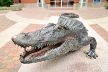 Statue of an alligator in front of Ben Hill Griffin Stadium