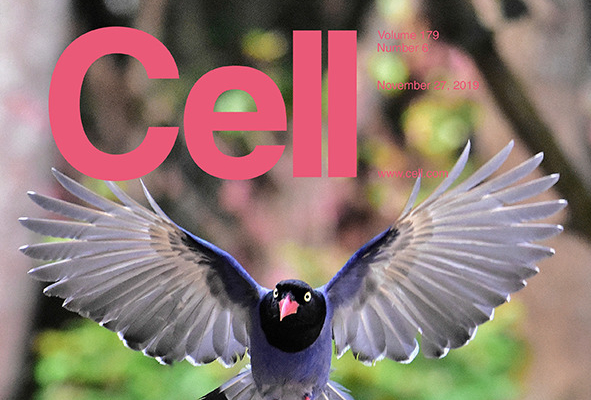 Cell journal cover